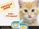 Talking Face HD Free